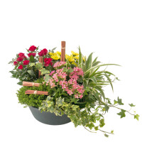 funeral arrangement of green and blooming plants